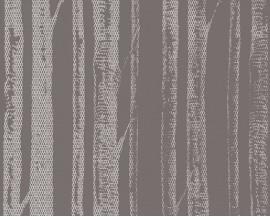 Tapeta 34135-3 Brązowe Brzozy